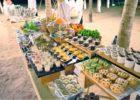 ダナン結婚式 グランヴィリオ・オーシャン・リゾート ベトナム結婚式 ベトナム・パーティー