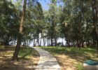 ソル・アンバン・フォレスト ビーチへ続く道 アンバンビーチ