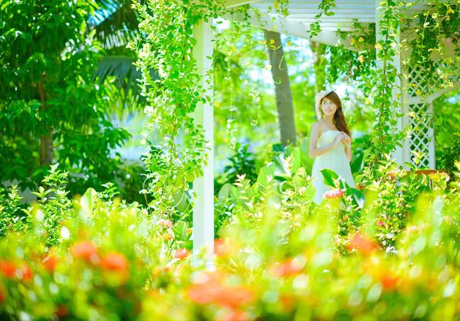 プレミア・ヴィレッジ・ダナン・リゾート<br /> 美しい新緑のガーデン