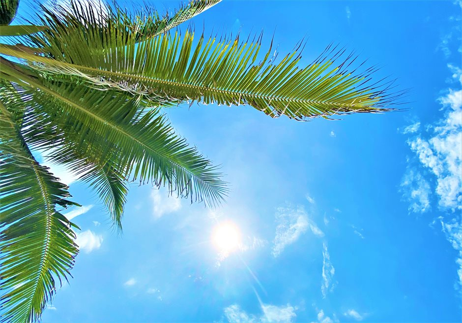 ダナンビーチの魅力